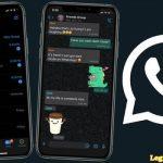Whatsapp Theme: Steps To Whatsapp Dark Mode Activation